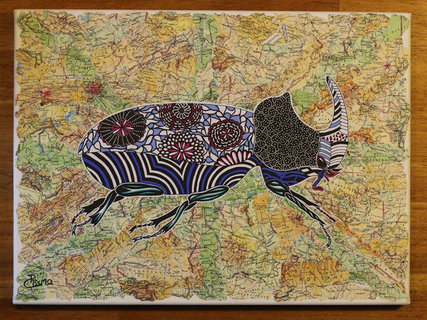 'Oryctes nasicornis' on collage map