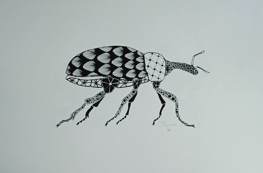 Screen print - Weevil