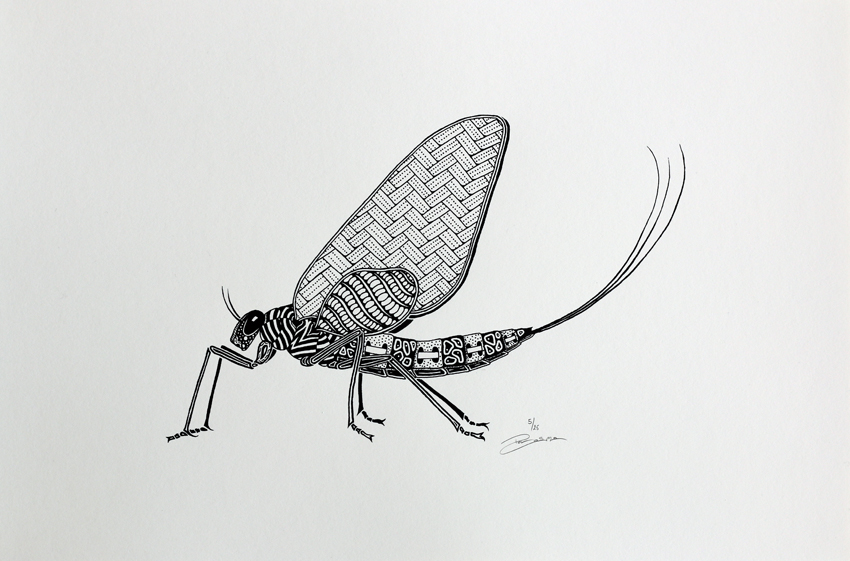 Screen print - Mayfly (P002)