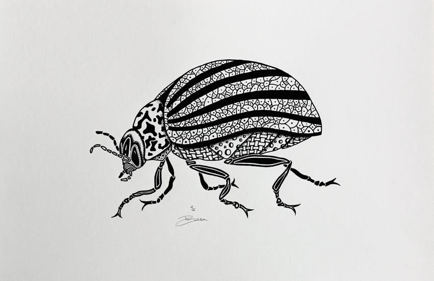 Screen print - Colorado beetle (P006)