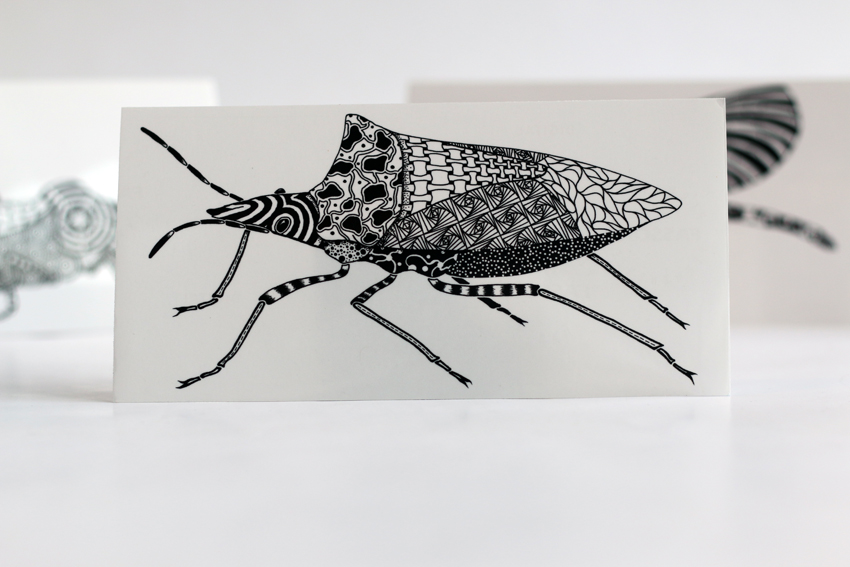 Black stink bug (ST01)