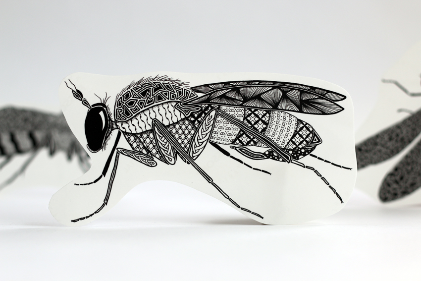 Long-legged fly (ST15)
